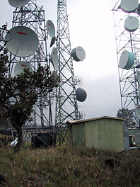 Microwave Antennas from Maui Headend